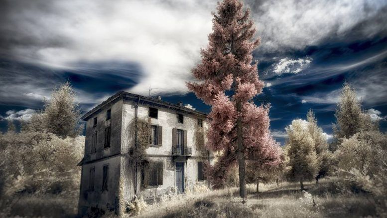 Infrared Passion by Domiad Photo Network cover image